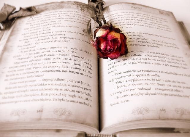 本の上に置かれた赤いバラ