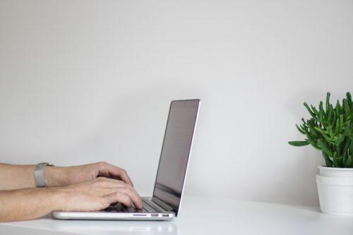 パソコンを打つ人と観葉植物
