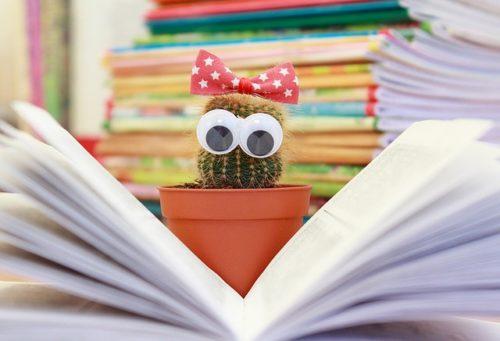 本を読むサボテン