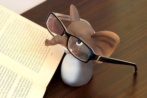 本を読むゾウ