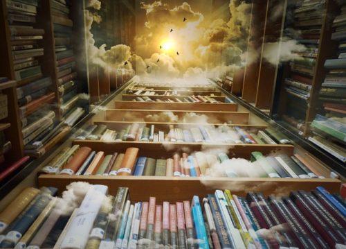 高い本棚と上の空を飛ぶ鳥