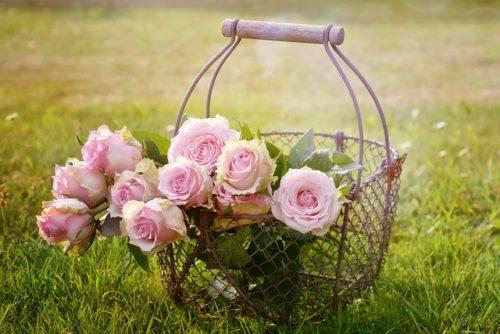 籠に入ったバラの写真