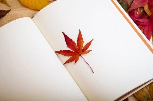 ノートと葉っぱ