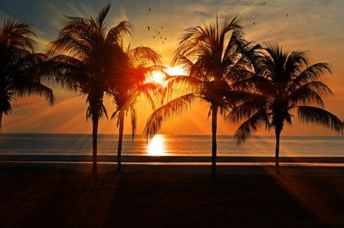 海辺の夕暮れの画像
