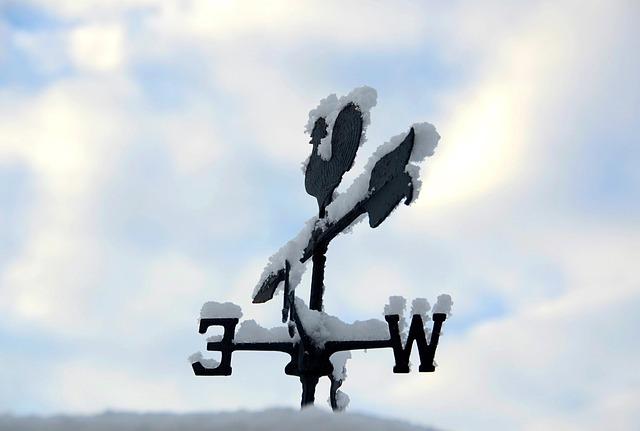 雪をかぶった標識