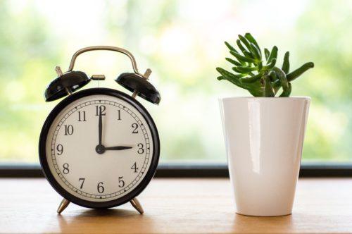 目覚まし時計と小さな植物の画像