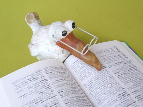 本を読む白い鳥(斜めアングル)