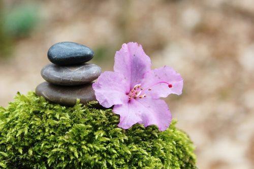 積まれた石とその近くに置かれた花