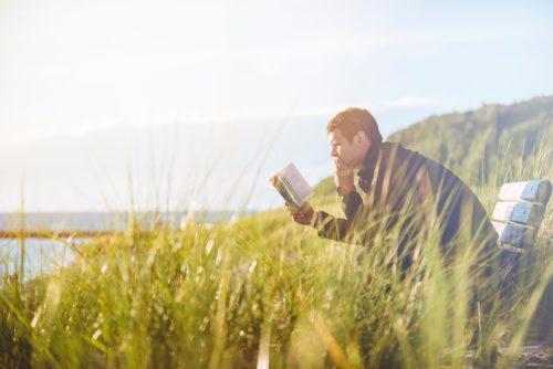 草むらのベンチで読書する男性